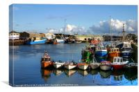 Kilkeel fishing fleet, Canvas Print