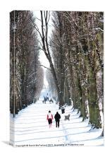 Walking down the avenue, Canvas Print