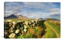 Pathway to the Mourne Mountains, Canvas Print