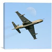 Nimrod aircraft, Canvas Print