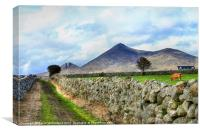 Mourne Mountain Farming, Canvas Print