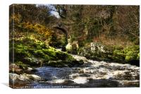 Spring in Roe Valley Country park, Canvas Print