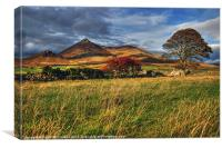 Autumn in the Mournes, Canvas Print