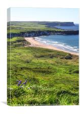 Fun on Whitepark Bay, Canvas Print