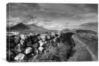 Path to the Mourne Mountains, Canvas Print
