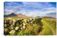 Into the Mournes, Canvas Print