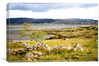 Meenacross landscape, Canvas Print