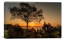 Lough Neagh Sunset, Canvas Print
