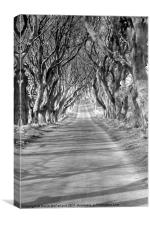 A long and lonely road, Canvas Print