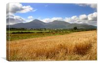 Golden Mountains of Mourne, Canvas Print