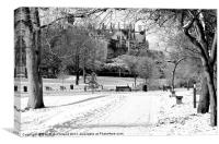 Lurgan Park in the snow, Canvas Print
