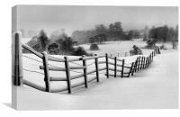 Harsh Winter, Canvas Print
