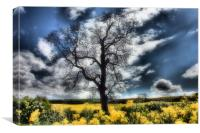 english spring, Canvas Print