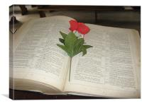 Bible with Flower