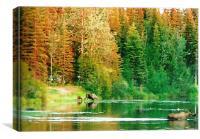 Alaskan Wildlife , Canvas Print
