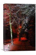 Winter Night, Canvas Print