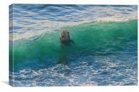 Surfer Chapple Porth Cornwall, Canvas Print