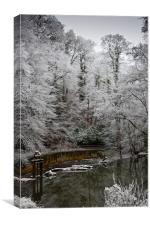 Winter Snow Scene, Canvas Print