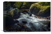The river Lyn flowing through Lynmouth Gorge