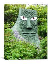 stump face, Canvas Print
