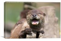 Happy Otter, Canvas Print