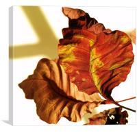 Leafy, Canvas Print