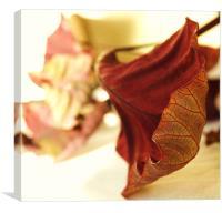Leaf1, Canvas Print