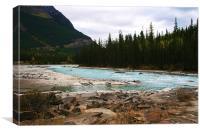 Athabasca River, Jasper, Alberta, Canvas Print