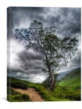 Glen Etive, The Highlands, Canvas Print