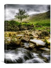 Lone Tree On River Etive, Canvas Print