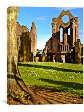 Summer Sun On Arbroath Abbey., Canvas Print