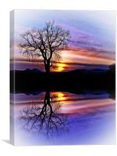The Tree Of Reflections, Canvas Print