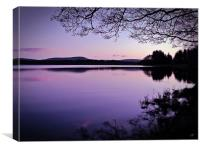 Lavender Light Over Lake Menteith, Canvas Print