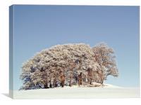A Scottish Snow Scene, Canvas Print