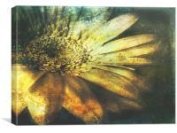 A Floral  Symphony, Canvas Print