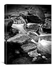Dream A Little Stream With Me., Canvas Print