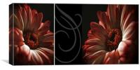 Floral Red Head Diptych, Canvas Print