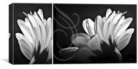 Petals, Canvas Print