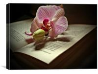 The Story Of An Orchid, Canvas Print