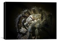 Tarantula Spider, Canvas Print