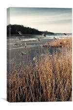 Frozen Ormesby Broad, Canvas Print