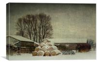 Hay bales in the snow, Canvas Print