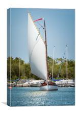 White sailed Norfolk Wherry, Canvas Print
