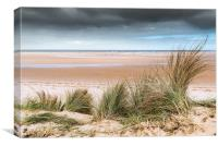 Marrams on Holkham Beach, Canvas Print