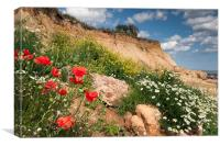 Poppies on a cliff, Canvas Print