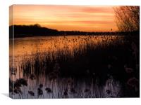 Sunset over Ormesby Little Broad, Canvas Print