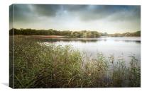 Ormesby Broad, Canvas Print