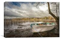 Boat at South Walsham Broad