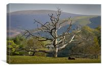 Dead tree and mountain, Canvas Print
