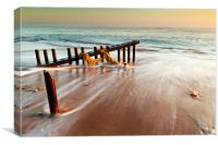Shore drift, Canvas Print